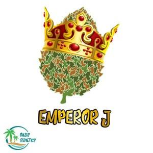 auto emperor j