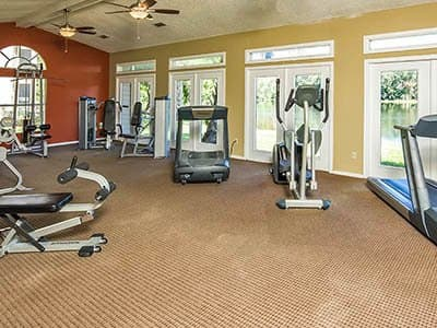 Apartments in tampa fl