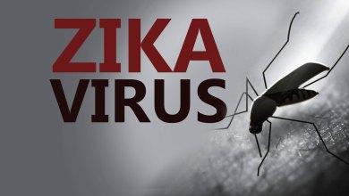 Photo of Capacitação para combater o vírus Zika no Maranhão
