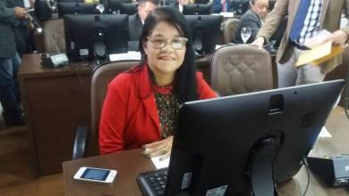 Foto de Fátima Araújo teve mandato de destaque em 2018