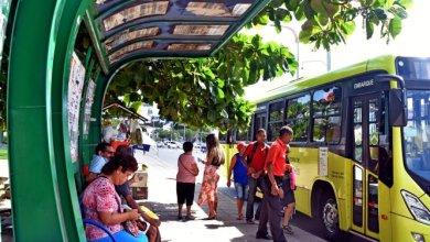 Foto de Frota de ônibus será reforçada para festa de fim de ano
