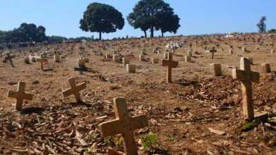 Photo of Brasil chega a 80 mil mortes por Covid-19