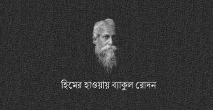 হিমের হাওয়ায় ব্যাকুল রোদন