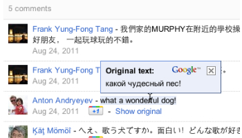 Google Translate for Google Plus