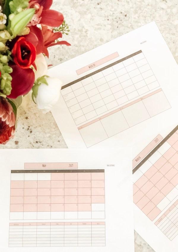 Influencer/ Blogger Planner & Calendar