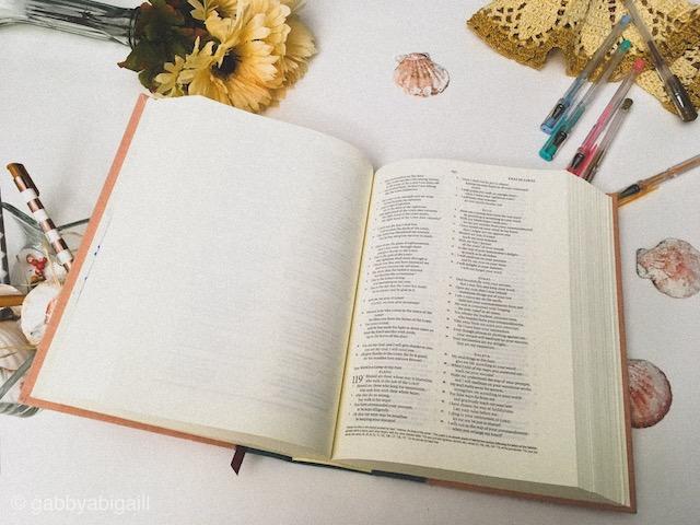 ESV Pink Journaling Bible