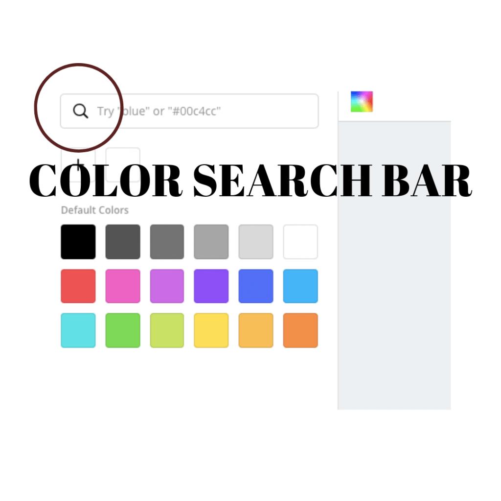 color search bar