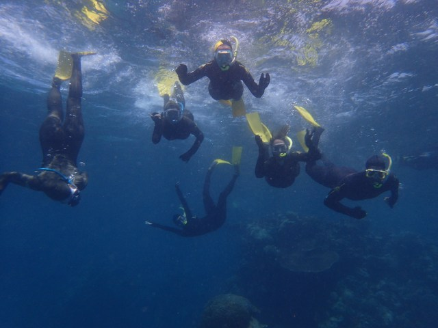 australia travel snorkel great barrier reef best things to do in tropical north Queensland