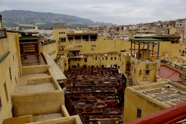 travel morocco-fes-tannery