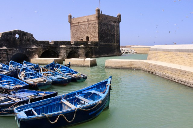 budget travel guide to essaouira, morocco harbor