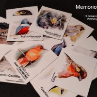 Memorice Animal Volumen 2