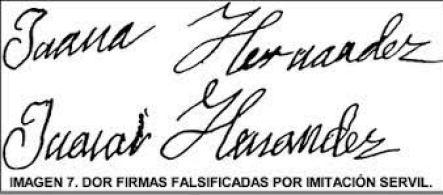 peritaje de firma falsa
