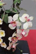Blumen_Kuchenmesse_0036