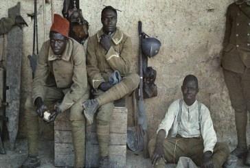Exposition sur la Première Guerre mondiale : les tirailleurs sénégalais à l'honneur