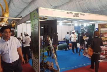 Ouverture ce lundi de la 2e édition du Gabon Wood Show