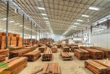 Ossouka Raponda satisfaite de la désignation de la ZERP de Nkok comme Zone franche mondiale de l'année dans la catégorie produits bois