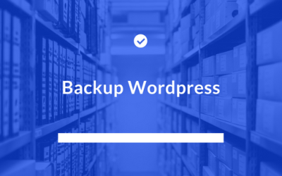 Cum fac backup unui website wordpress