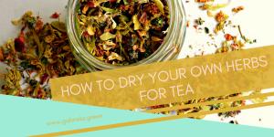 DIY: How to dry herbs for tea   Gabriela Green   www.gabriela.green