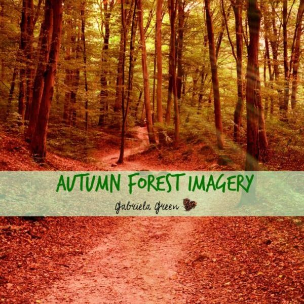 autumn-forest-imagery-gabriela-green-4