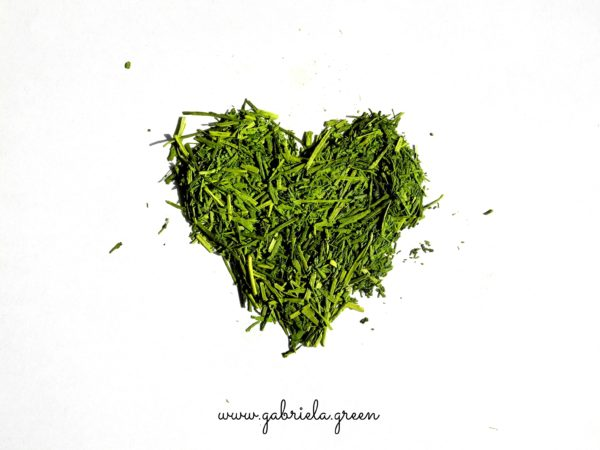 matcha-green-tea-love-gabriela-green