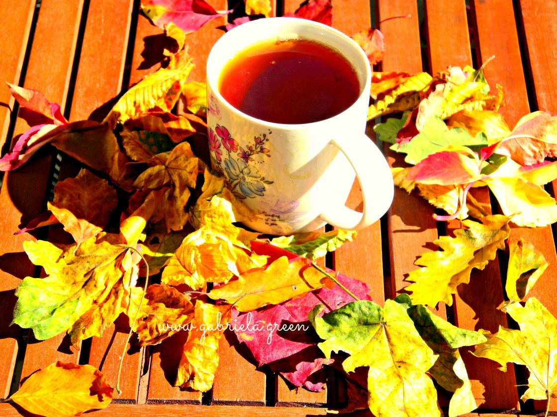 Tea mug and autumn Leaves | Gabriela Green | www.gabriela.green