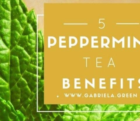 5 Peppermint tea benefits | Mint tea benefits | Bloating, digestion | www.gabriela.green