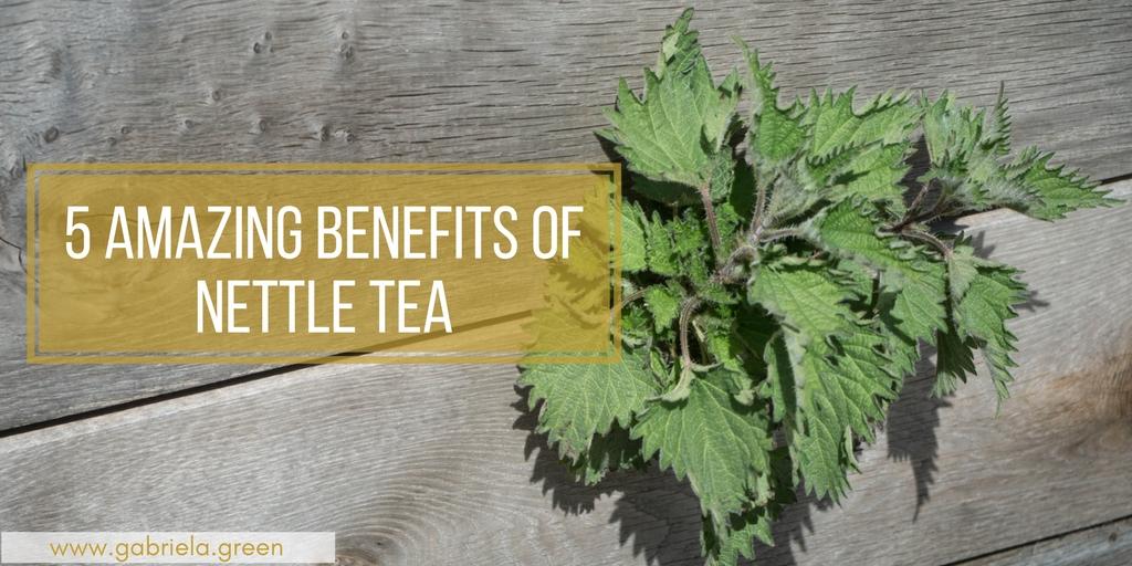 5 Amazing Benefits Of Nettle Tea- Gabriela Green Blog - www.gabriela.green