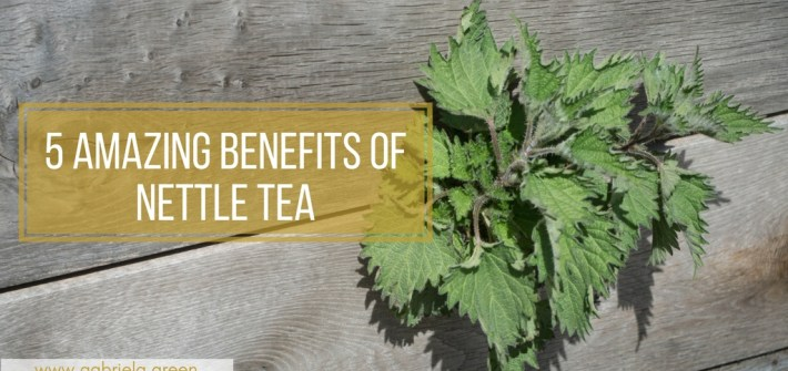 5 Amazing Benefits Of Nettle Tea- Gabriela Green Blog - www.gabriela.green