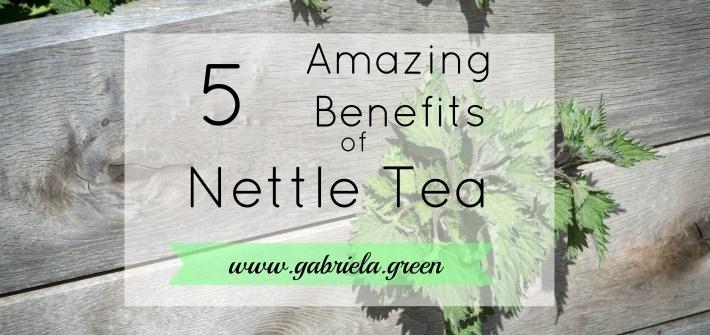 5 amazing benefits of nettle tea | Gabriela Green | www.gabriela.green