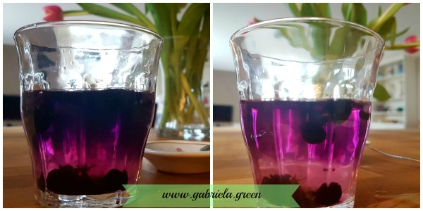 Black Goji Berry Tea Lemon Juice | Gabriela Green | www.gabriela.green