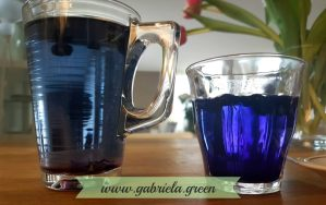 Black Goji Berry tea Hot vs warm water comparison Gabriela Green