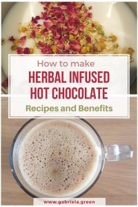 How to make herbal infused hot chocolate [recipes+benefits] _ www.gabriela.green