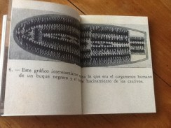 IMG_1892
