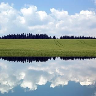 gabriela fine art photography- Never Land 1