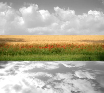 gabriela fine art photography- Silver Fields