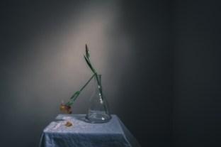 gabrielafineartphotography- still life-2