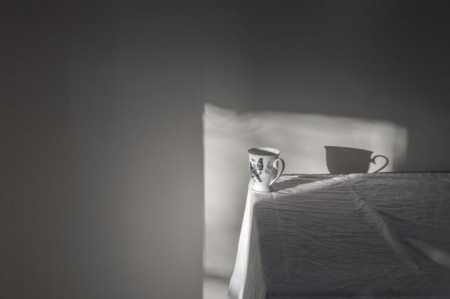 gabrielafineartphotography|still life-31