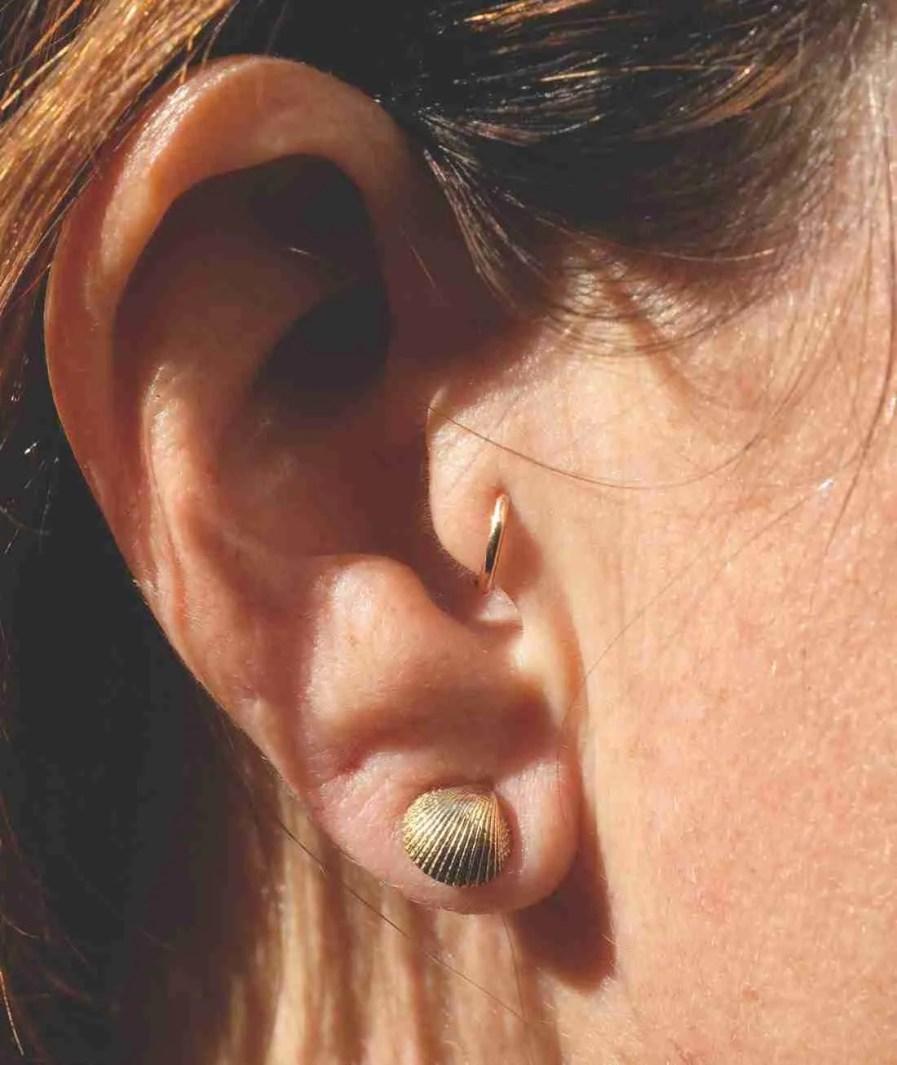 beautiful seashell stud earrings