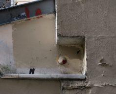 Intra La Rue Rue André Antoine