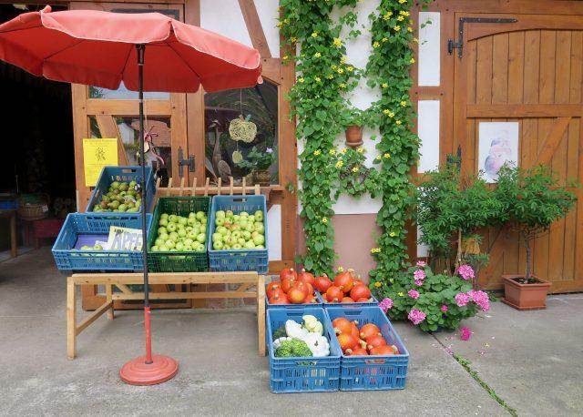 Hofladen in der Südpfalz