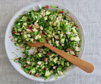 Gurkensalat mit Radieschen und Kresse