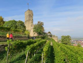Pfalz_Wachenheim_2