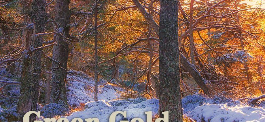 Green Gold by Gabriel Hemery