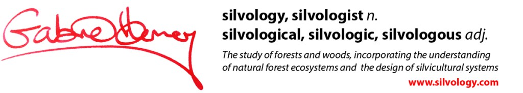 silvology definitions