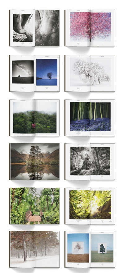 Some spreads from Trees of the Planet