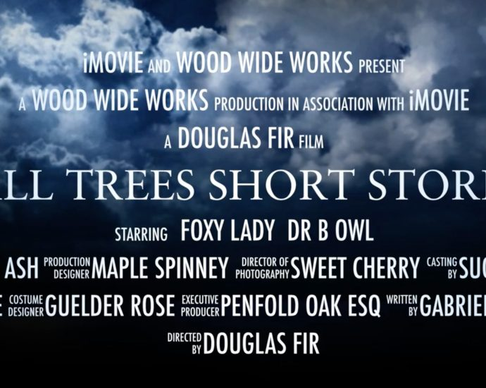Tall Trees Short Stories trailer