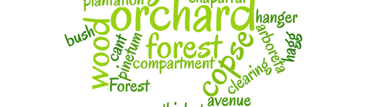 collective nouns for trees