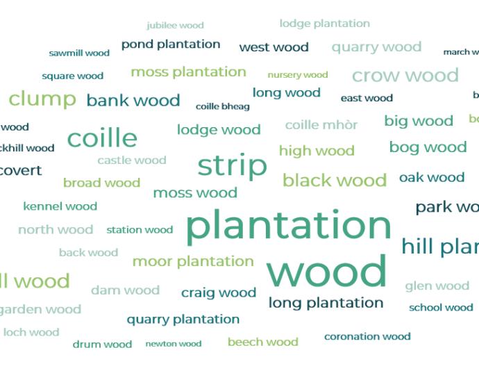 Woodland names of Britain