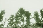 verdescape-