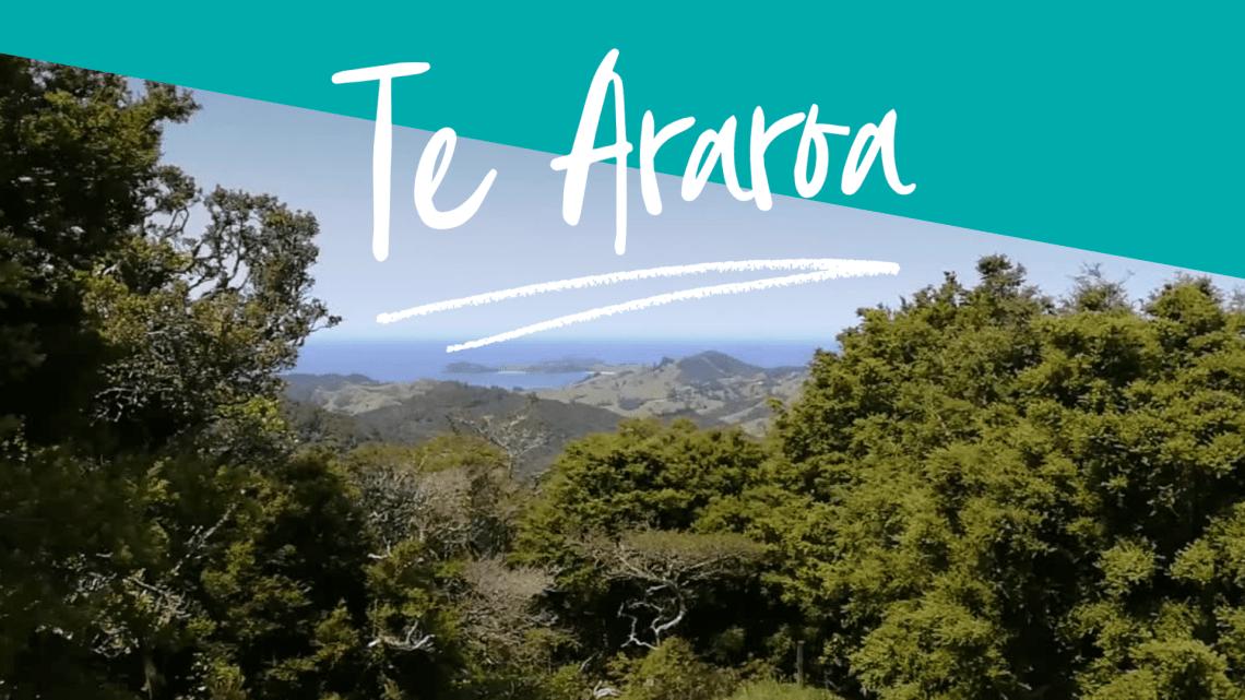 Te Araroa - Cape Reinga to Auckland